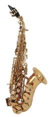 Roy Benson Curved Sopran Saxophone