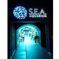 Travel Sea Aquarium Singapore ADULT