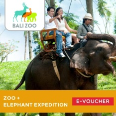 Zoo + Elephant ExpeditionJungle Outbound - Adult
