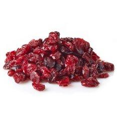 HouseOfOrganix Natural Dried Cranberry 100 Gr