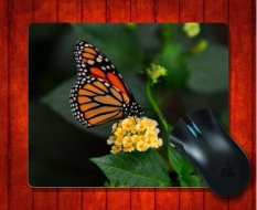 MousePad Butterfly On Flower Animal For Mouse Mat 240*200*3mm Gaming Mice Pad - Intl