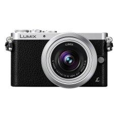 Panasonic Lumix DMC-GM1K DSLM Camera Kit With 12-32mm G Vario HD Lens