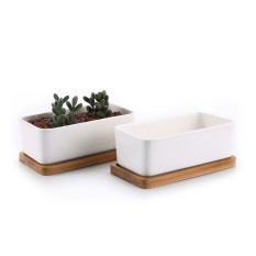 6.5 Inch Ceramic White Modern Oval Design Sucuulent Plant Pot/Cactus Plant Pot With Bamboo Tray(set of 2 ) - intl