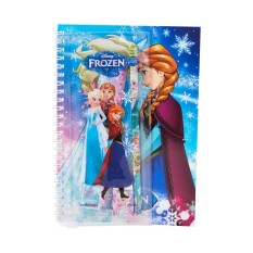 Disney Frozen Note Book Set