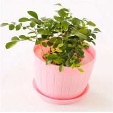 Garden Plant Pots Barrel Type Flowerpot Plastic Flower Pots with Tray Home Decoration (pink) - Intl