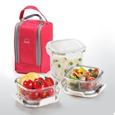 Lock & Lock LBF221 Series BPA Free Lunch Box Set With Insulated Bag + 3 TritaLock & Lock LBF221 Series BPA Free Lunch Box Set With Insulated Bag + 3 Tritan Containers (Pink (LBF221P) )
