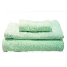 Quincy HomeQuick Dry Towel - Green