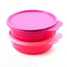 Tupperware Everyday Bowl (2)