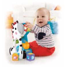 Fisher-Price® Roller Blocks Tumblin' Zebra