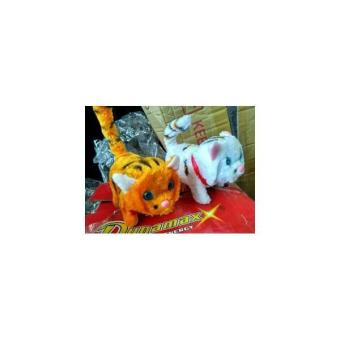 Mainan Anak Online Kucing Bersuara Lazada Indonesia Source Mainan Boneka  Kucing Musik Bisa . 0324e0fe2b
