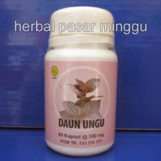 2 botol kapsul daun ungu herbal insani (isi 60 kapsul)