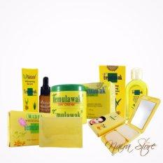 Cream Temulawak Original Holo Super - Paket Super Komplit ( Cream, Sabun, Toner, Serum dan Bedak )