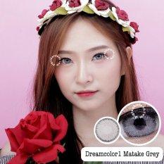 Dreamcolor1 Matake Grey Softlens - Minus 2.00 + Gratis Lenscase