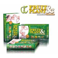 Fruit & Plant Asli 100% Original-Pelangsig Badan Alami