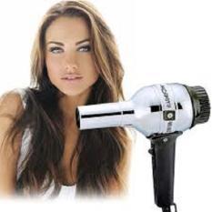 Hair Dryer Portable Pengering Rambut Kecil Listrik Praktis
