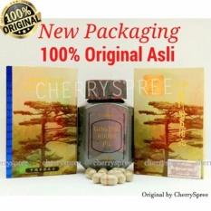 Original Kianpi Ginseng Pil Gold Obat Herbal Penggemuk Herbal Gold - 60 Capsul Gold