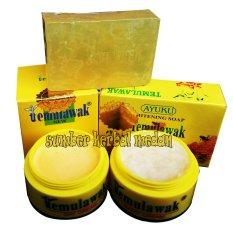 Temulawak Hologram Emas Original Paket Cream Siang&Malam Plus Sabun Madu