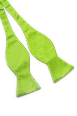 Blue Lans Solid Plain Silk Self Tie Bow Tie (Green)