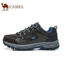 Camel Men's Outdoor Sport Hiking Anti-skidding shoes(Blue) - intl