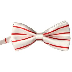 Fashion Rayon Bow Tie Grid Men And General Neckties Tie White - Intl