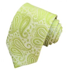 Gracefulvara Jacquard Woven Fashion Men's Wedding Party Silk Tie Classic Necktie (Green)