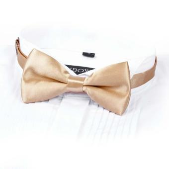 Men Satin Bow Tie Dickie Bow Pre-Tied Wedding Tuxedo Tie Necktie Champagne A