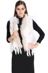 New Women Hot Fashion Knit Sleeveless Faux Fur Vest With Raccoon Fur Collar Waistcoat
