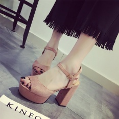 Summer han edition of the new platform waterproof thick with high heels for women's shoes fish mouth one word cingulate hollow sandals - intl