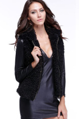 Sunweb Women Fall Winter Faux Fur Vest Winter Sleeveless Luxury Fur Waistcoat Black (Intl)