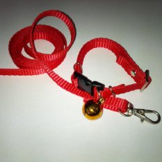 Collar/Kalung uk S + Leash Merah untuk Kucing, Kelinci, Musang, Puppy Small breed