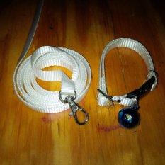 Collar/Kalung uk S + Leash Putih untuk Kucing, Kelinci, Musang, Puppy