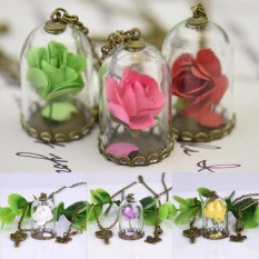 Couples Charm Glass Long Chain Dried Flowers Necklace Sweater Accessories - intl