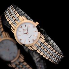 Kobwa Merchants Know When ZHISHI Import Movement Sapphire Mirror Fashion OL Spike Drill Scale Quartz Watch