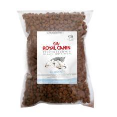 royal canin pro queen makanan kucing repack - 500 gram