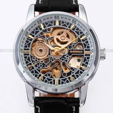 Skeleton Mens Automatic Mechanical Watch (Brown)