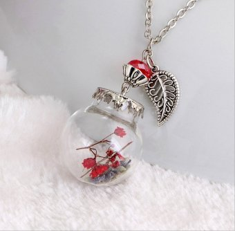 The New Fashion Boutique Glass Dried Necklace DIY Long Necklace Decorated With Sweater Chain - Ca143-E - Intl