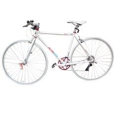 Alton Outdoor Bike RCT D8