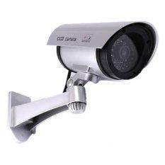 Flashing LED Fake Dummy Wireless CCTV Security Camera (Intl)