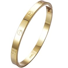 Jiayiqi Women Titanium Bangle Golden Charm Bracelet