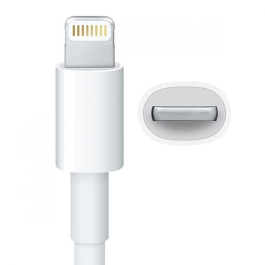 Seiko Edition 30 Pin Female to Lightning 8 Pin Male Sync Data Cable Adapter for iPhone - Putih