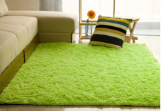 Shaggy Anti-skid Carpets Rugs Floor Mat/Cover 80*120cm (Green) (Intl)