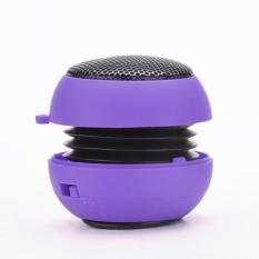 Sunweb Portable USB Mp3 Speaker Stereo Mini Speaker Music MP3 Player Amplifier Loudspeaker (Purple)