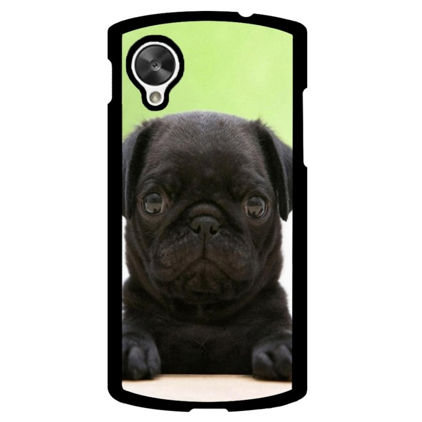 Toy Poodle Dog Pattern Phone Case for LG Nexus 5 (Multicolor)