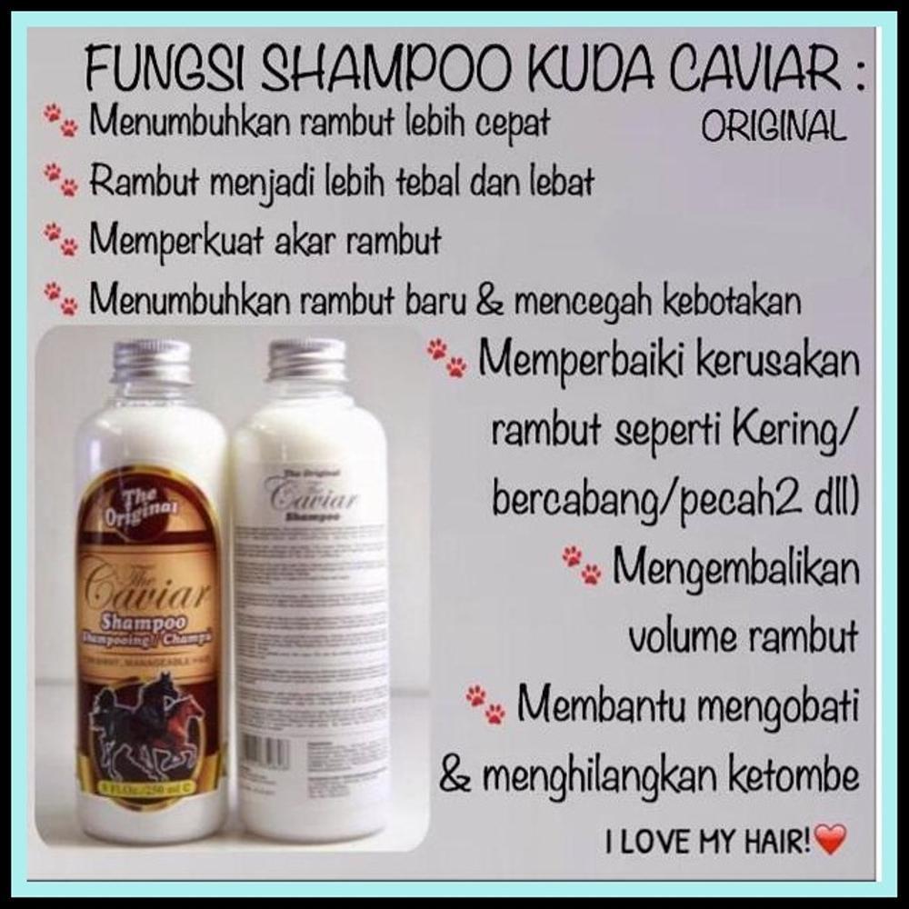 Shampoo Caviar Shampo Kuda Bpom 250 Ml 4 Botol Gratis Eyebrow Sampo
