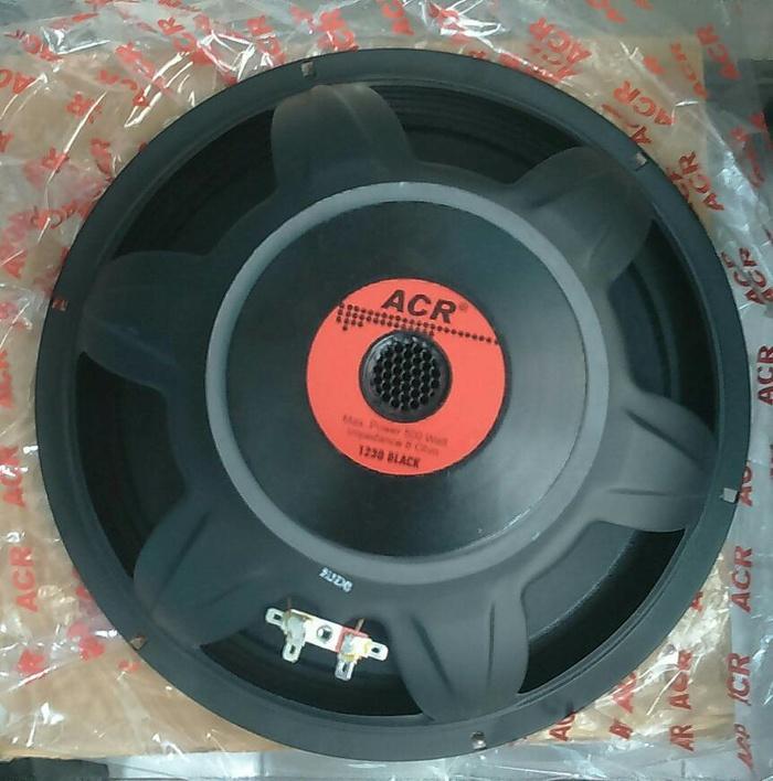 Speaker ACR 12