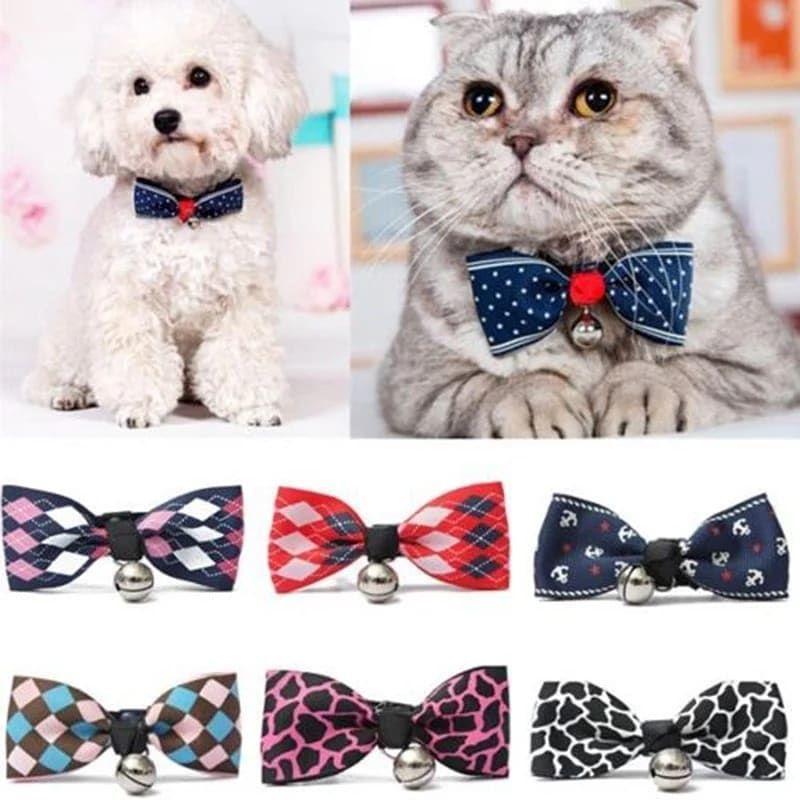 Kalung anjing kalung kucing premium import