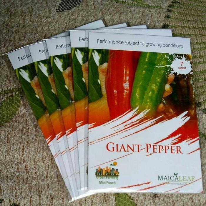 DISKON Benih Bibit Cabe GIANT PEPPER Cabai Terbesar Maica Leaf ORI