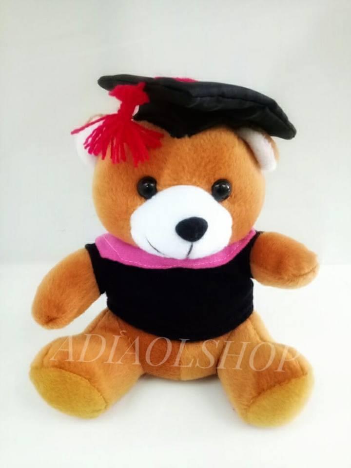 Boneka Wisuda Teddy Bear Murah 20Cm Halus dan Lembut - Cokelat