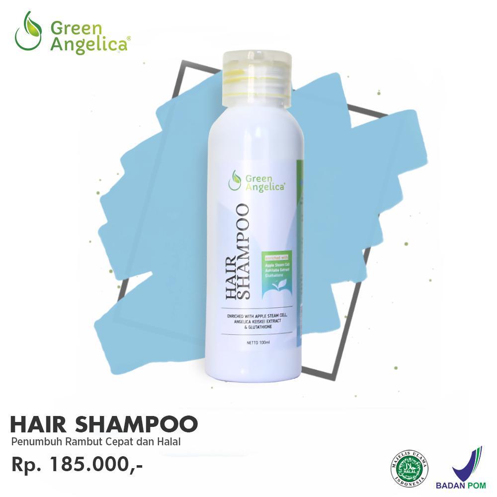 Shampo Untuk Rambut Rontok dan Berketombe Green Angelica Hair Shampo Alami