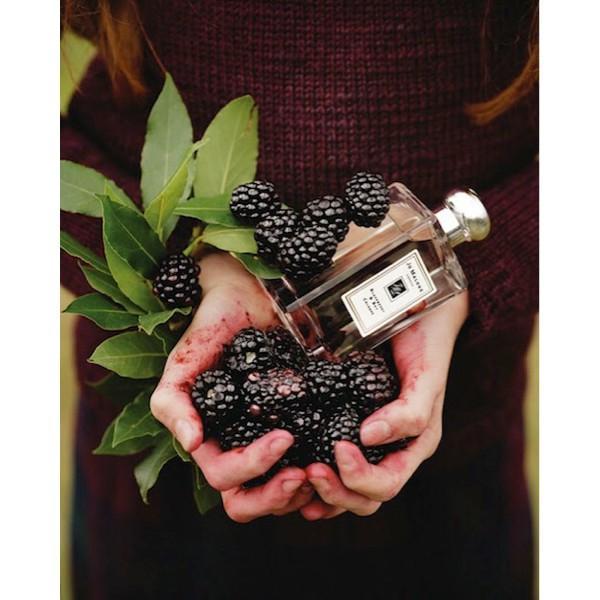 Original Parfum Jo Malone Blackberry & Bay 100Ml Cologne